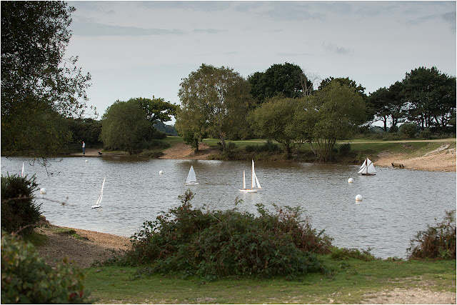 Model yachting in new forest