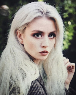 Allison Harvard Net Worth, Income, Salary, Earnings, Biography, How much money make?