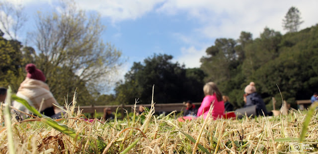 meditação na Quinta do Pisão