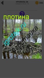 в лесу построена небольшая плотина 400 плюс слов 2 28 уровень