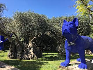 entrada da loja com jardim e cão azul