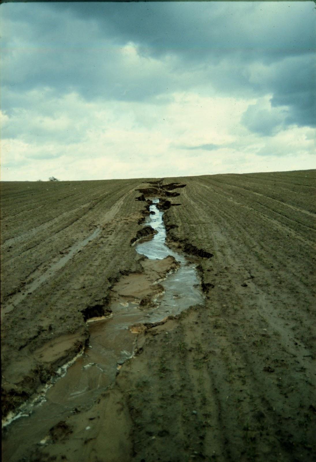 Gây xói mòn đất nông nghiệp là hành vi hủy hoại đất (Ảnh minh họa)