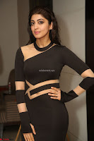 Pranitha Subhash in a skin tight backless brown gown at 64th Jio Filmfare Awards South ~  Exclusive 173.JPG