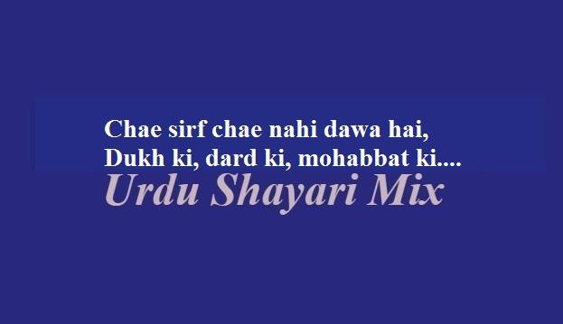 2 line poetry | 2 line shayari | Attitude poetry, Chae sirf chae