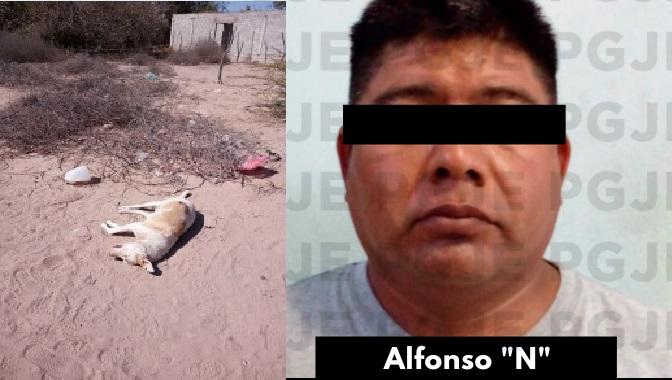 ¡Este fue el que mató a balazos al perrito!