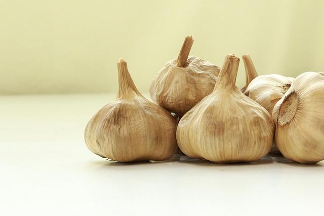 cara membuat bawang hitam dengan fermentasi