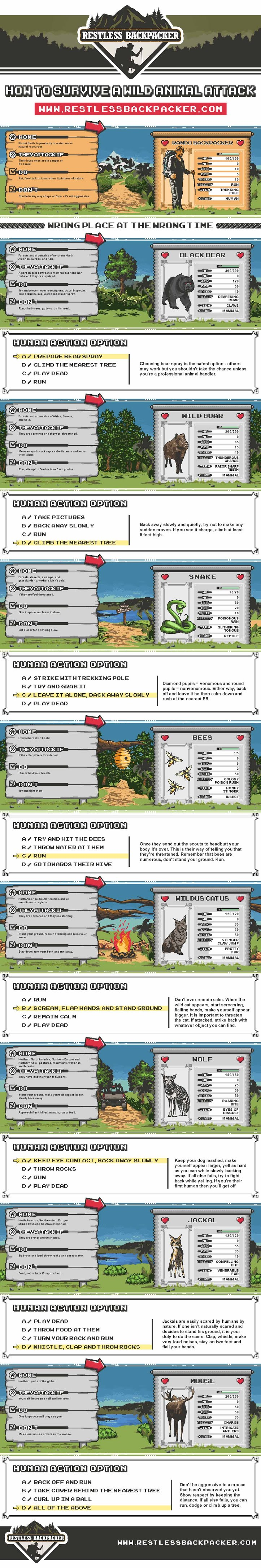 How to Survive a Wild Animal Attack #infographic