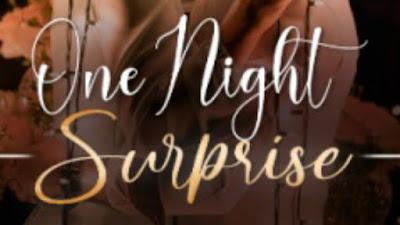 Novel One Night Surprise pdf