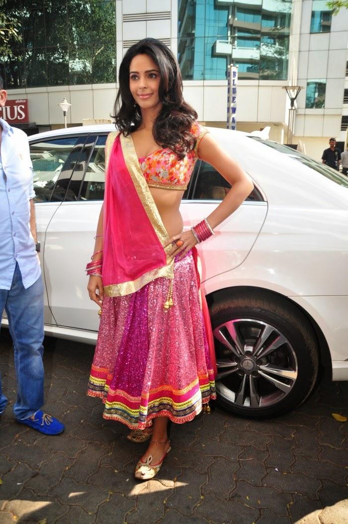 Mallika Sherawat Hot Images - Images-4560