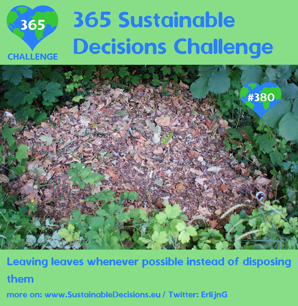 #380 - Leaving leaves whenever possible instead of disposing them, sustainable living, sustainability, climate action