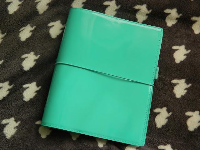Aqua Mint Turquoise Domino Filofax