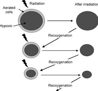 The reoxygenation process