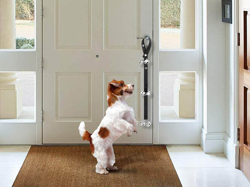 Top Rated dog bells for potty training