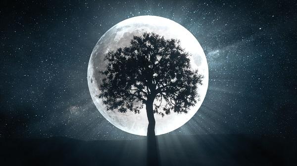 Phép thuật trăng tròn để xoay chuyển cuộc sống của bạn