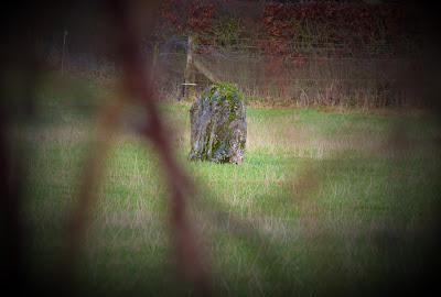 Clonfertmulloe Standing Stone_Old Kyle_Laois
