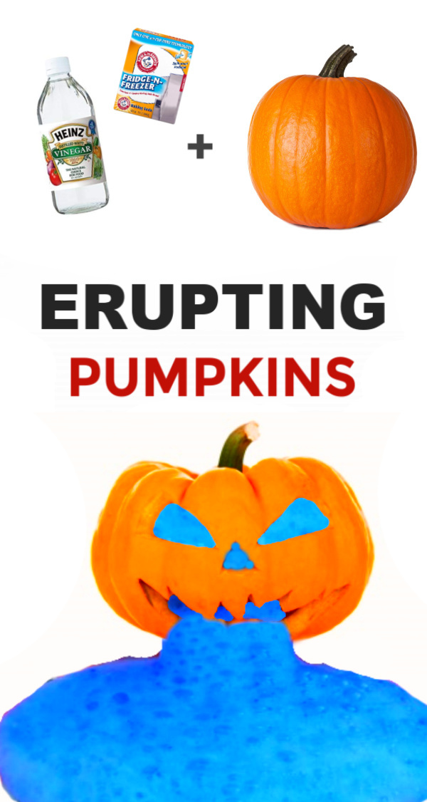 Explore chemical reactions and make erupting pumpkins!  This science experiment is great for kids of all ages and perfect for Fall! #eruptingpumpkinscience #eruptingpumpkins #eruptingpumpkinsexperiment #pumpkinvolcano #pumpkinvolcanoforkids #pumpkinvolcanopreschool #fizzingpumpkins #bakingsodavinegarexperiment #bakingsodavolcanoforkids #pumpkinactivitiespreschool #fallcrafts #growingajeweledrose #activitiesforkids