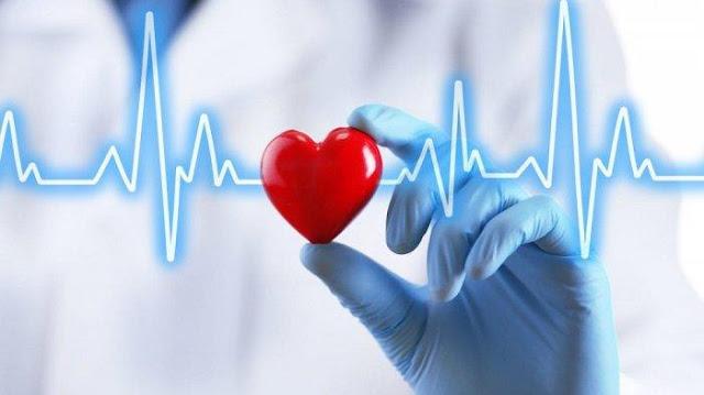 Manfaat Donor Darah Bagi Tubuh, PMI Bireuen, UTD RS Fauziah Bireuen