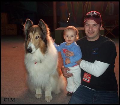 New Lassie Dog