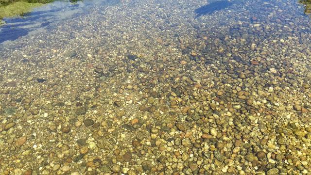 àgua limpa que se vê os peixes