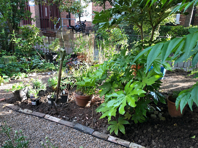 Garden fork and plants in pots waiting to be planted in a garden border