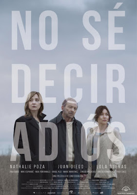 No Sé Decir Adiós 2017 DVD R2 PAL Spanish