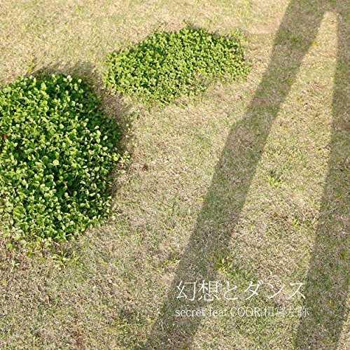 [Single] secret – 幻想とダンス (feat. COOR & 相宮左弥) (2015.06.03/MP3/RAR)