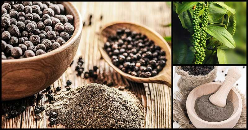 Reasons To Add Black Pepper Into Our Diet