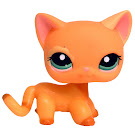 Littlest Pet Shop Multi Pack Cat Shorthair (#1643) Pet