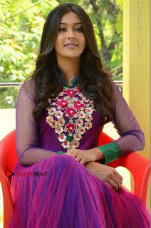 Actress Pooja Jhaveri Latest Stills in Purple Salwar Kameezt at Dwaraka Success Meet  0175.JPG