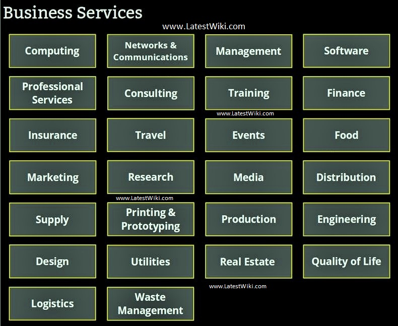 The Next Big Thing In Business Services Examples Types Of Business Services | LATESTWIKI