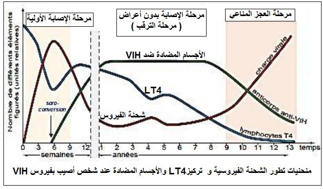 منحنيات تطور الشحنة الفيروسية وتركيز LT4 والأجسام المضادة عند شخص أصيب بفيروس VIH
