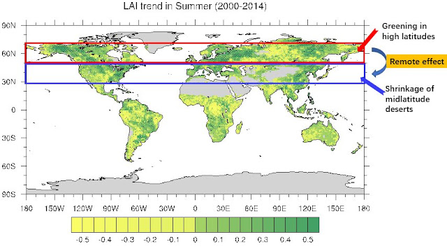Greening at high latitudes may inhibit the expansion of midlatitude deserts