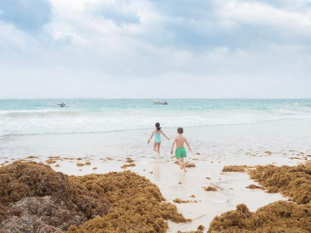 Dos niños en bañador corriendo hacia el mar en una playa de arena blanca con sargazo