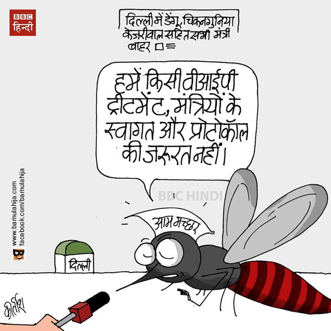 chikungunya, dengue, delhi, cartoons on politics, indian political cartoon, arvind kejriwal cartoon, aam aadmi party cartoon