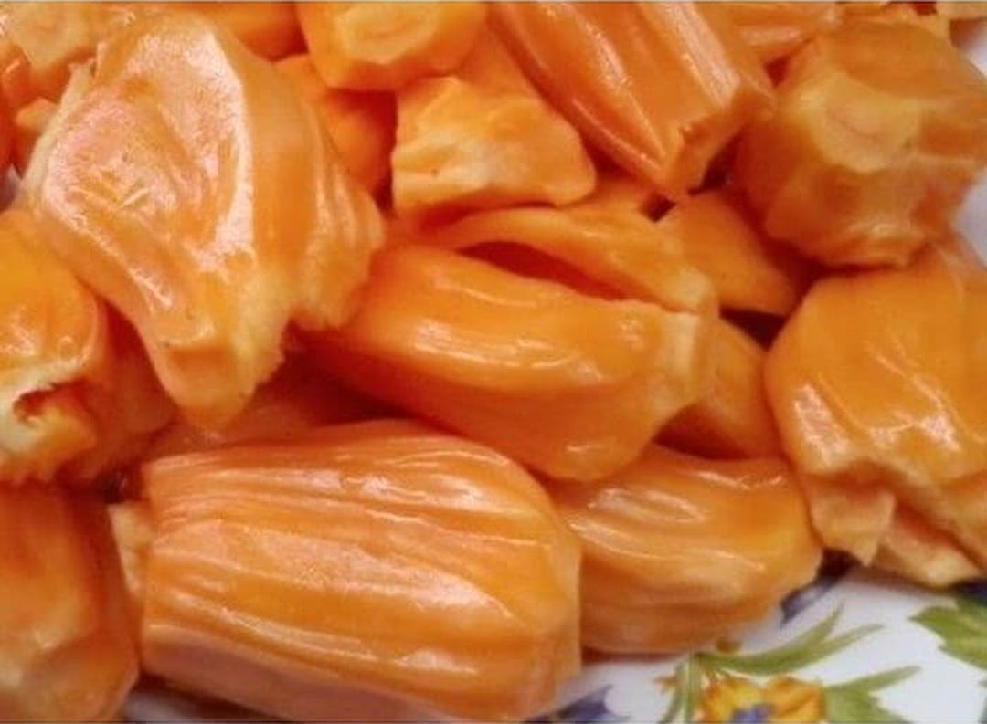 Stok melimpah! Bibit Buah Nangka Mini Super Orange BISACOD Kota Bekasi #jual bibit buah buahan
