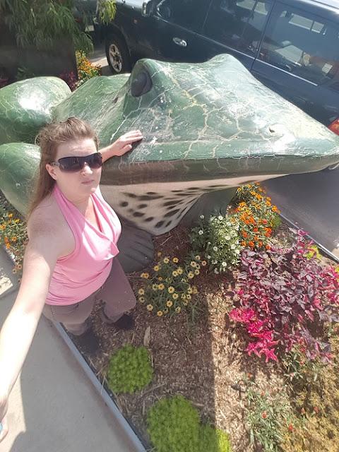 Darwin BIG Things | BIG Frogs