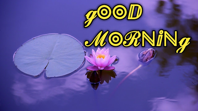 Romantic good morning images pics free download