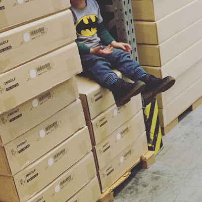 Kugelfisch-Blog: Jannes im IKEA Regal