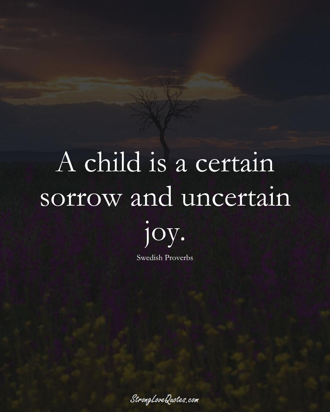 A child is a certain sorrow and uncertain joy. (Swedish Sayings);  #EuropeanSayings