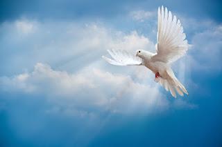 O que o Espírito Santo faz?