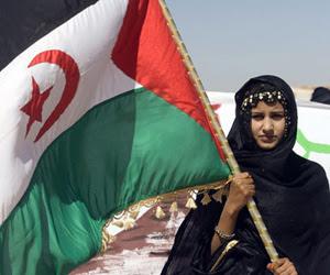 Sahara Occidental. Tierra y libertad