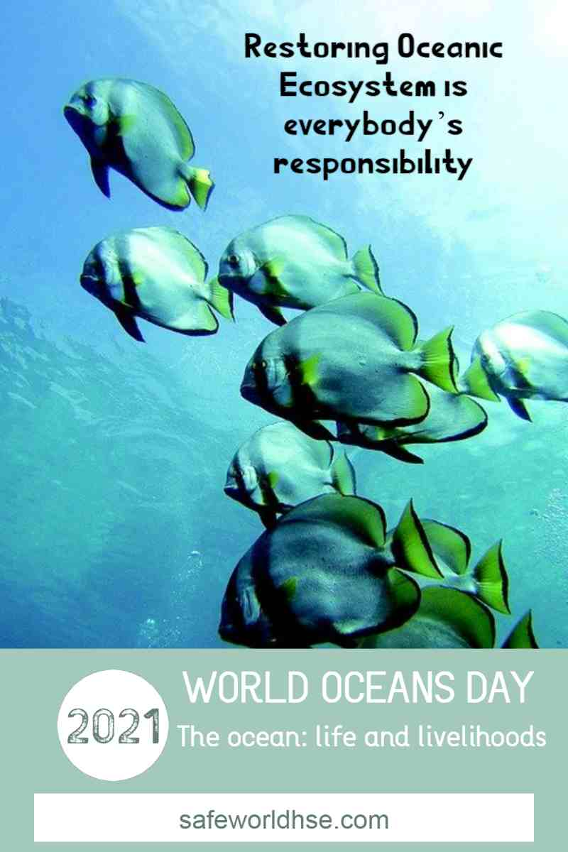 Best Slogans and Quotes on World Ocean Day 2021 with Image messages and Posters