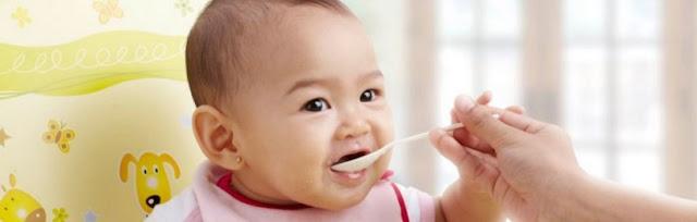 makanan tambahan bayi usia 6 bulan