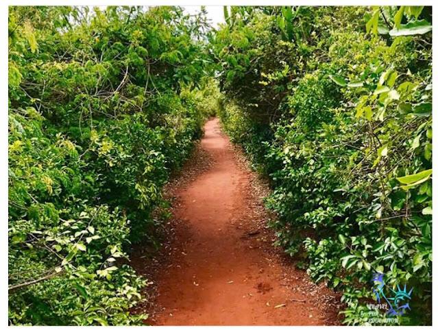 උත්කාපාතයක් වැටීමෙන් නිර්මාණය වූ - උස්සන්ගොඩ (Ussangoda) - Your Choice Way