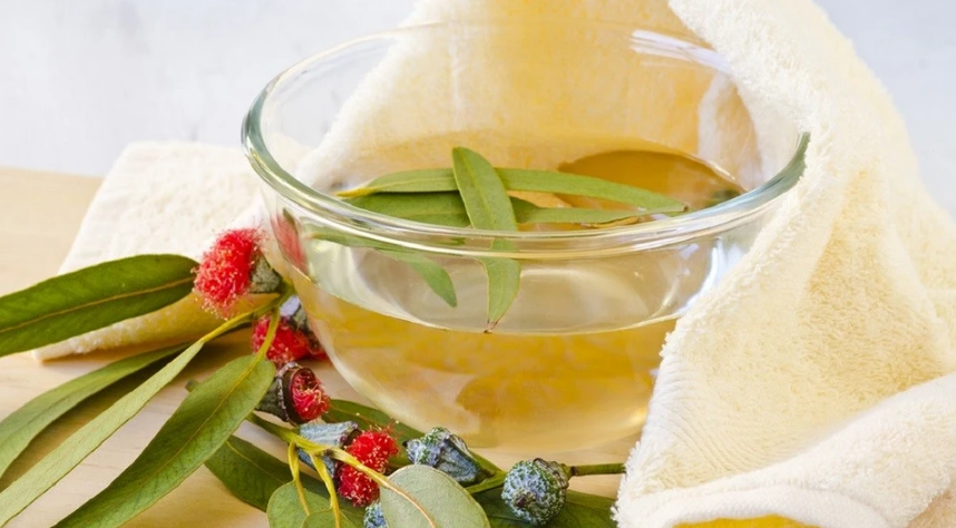 Inhalation with eucalyptus at home: methods and rules