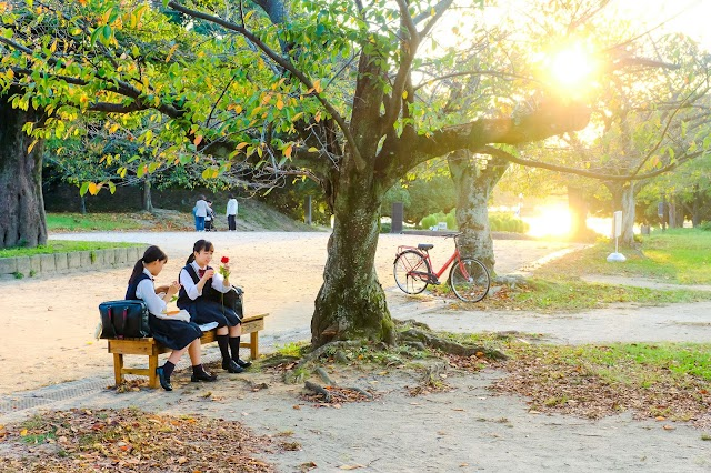 A beautiful, dreamy Japan during interseason moment turning to autumn