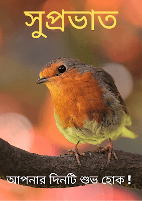 Good morning Bird images in Bengali