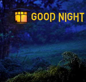 {LATEST} Good Night Images for Friends