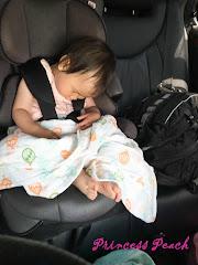 茉莉坐汽座