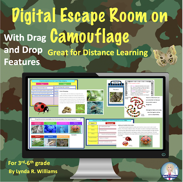 Distance Learning Escape Rooms